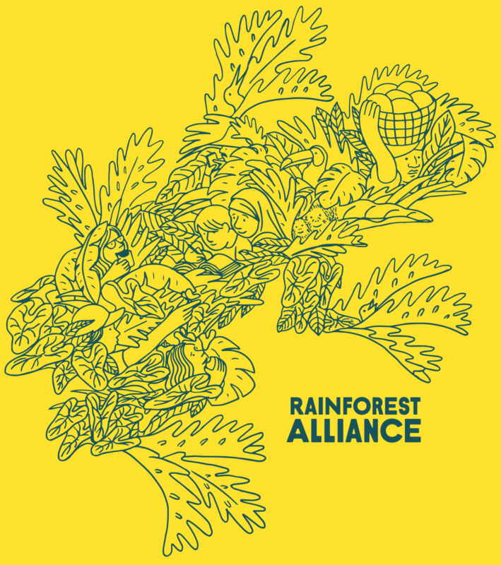 A special Follow the Frog piece by Rainforest Alliance