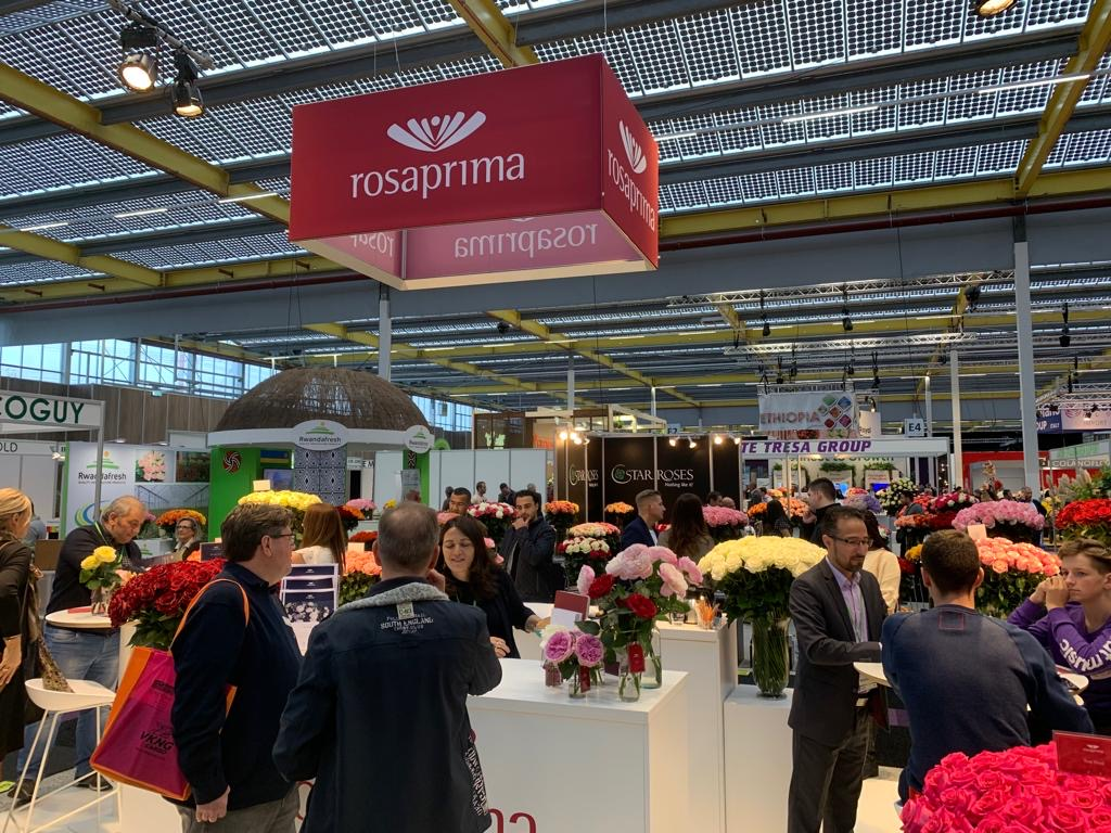 Rosaprima's stand was frequently visited at IFTF